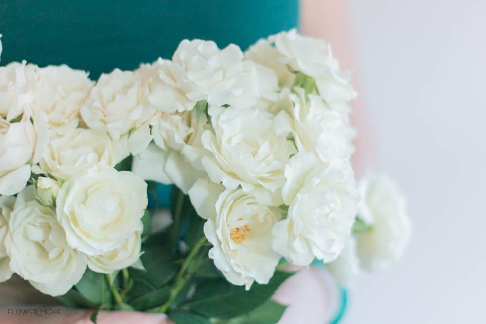 Cream spray rose flower
