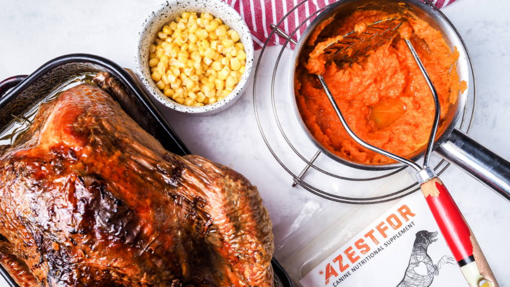 ingredients easy homemade dog food turkey corn pumpkin