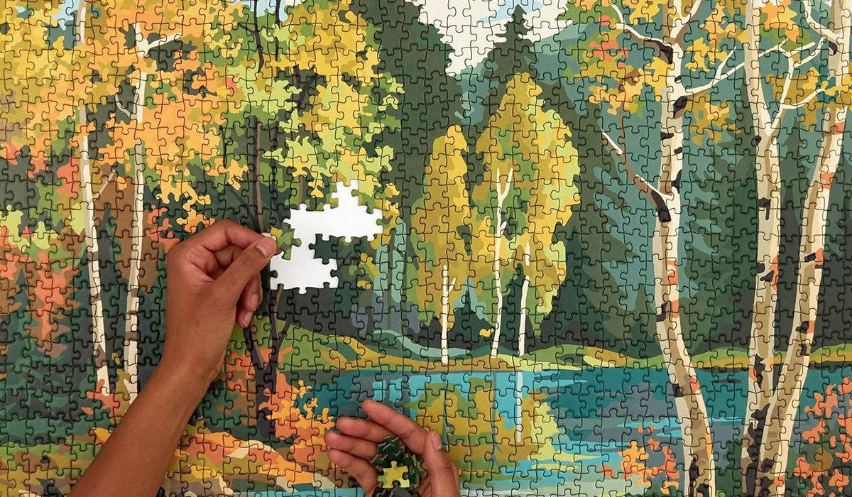 Paint by Numbers Puzzles
