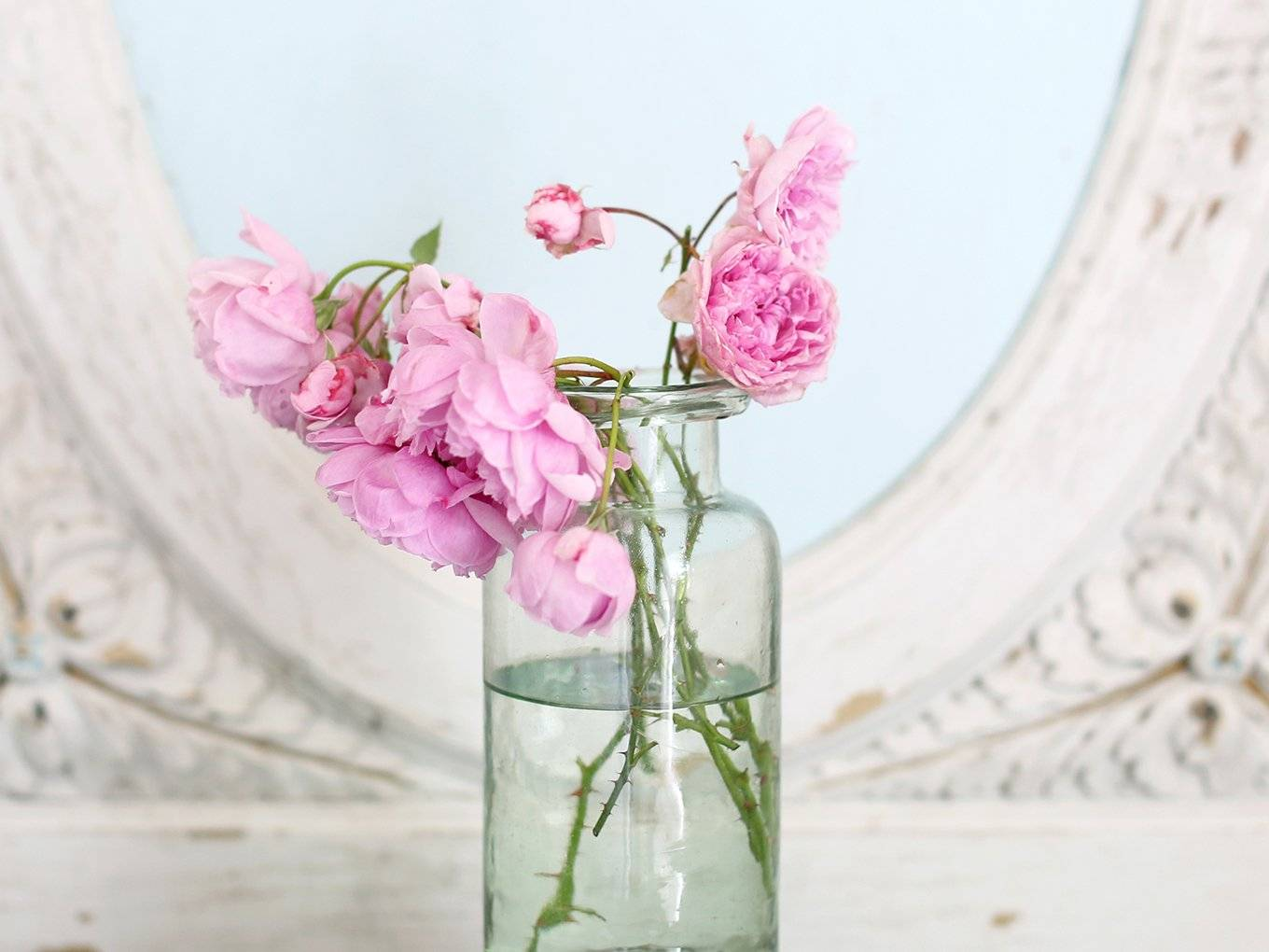 Shabby Chic: The Official Rachel Ashwell Shabby Chic Couture Site