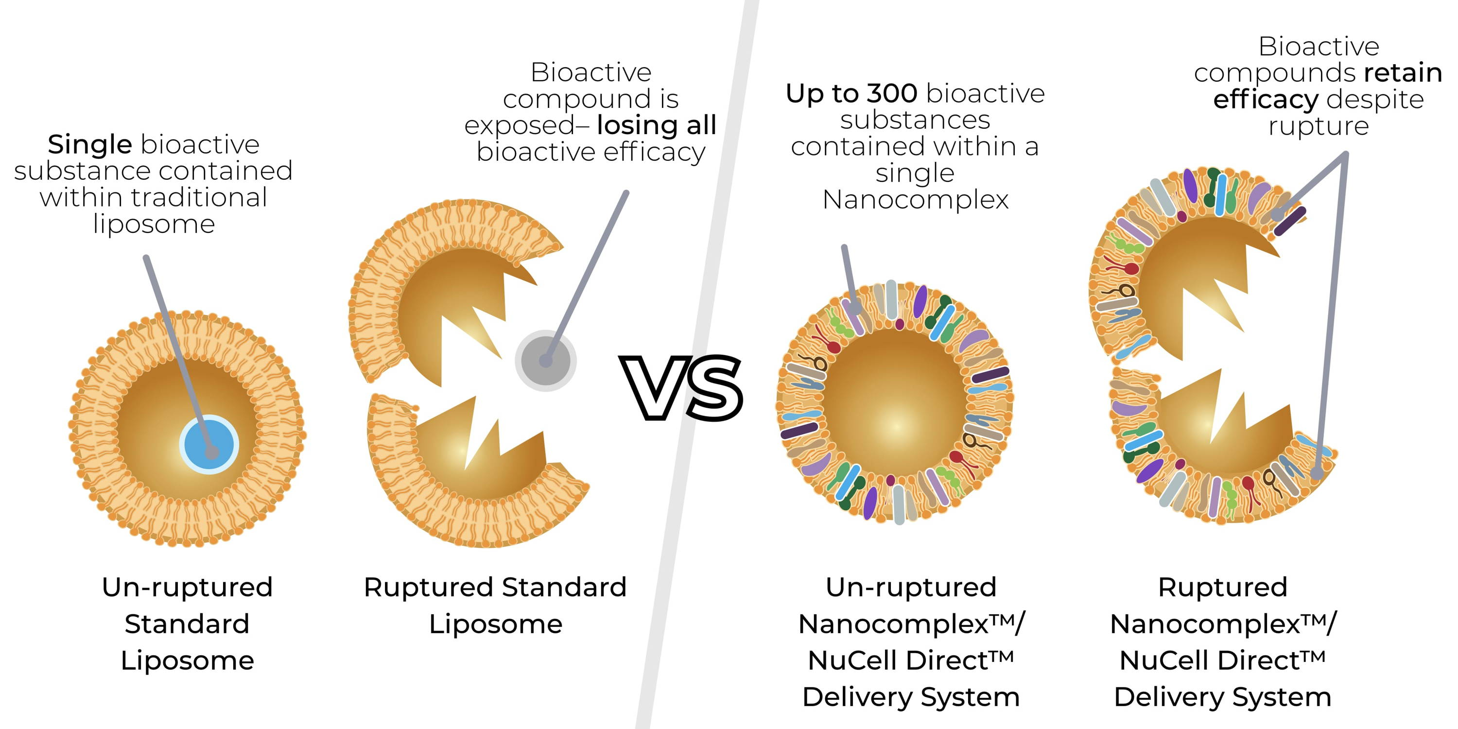 Figure 4. Traditional liposomal delivery system vs. Nanocomplex/NuCell Direct™ delivery system