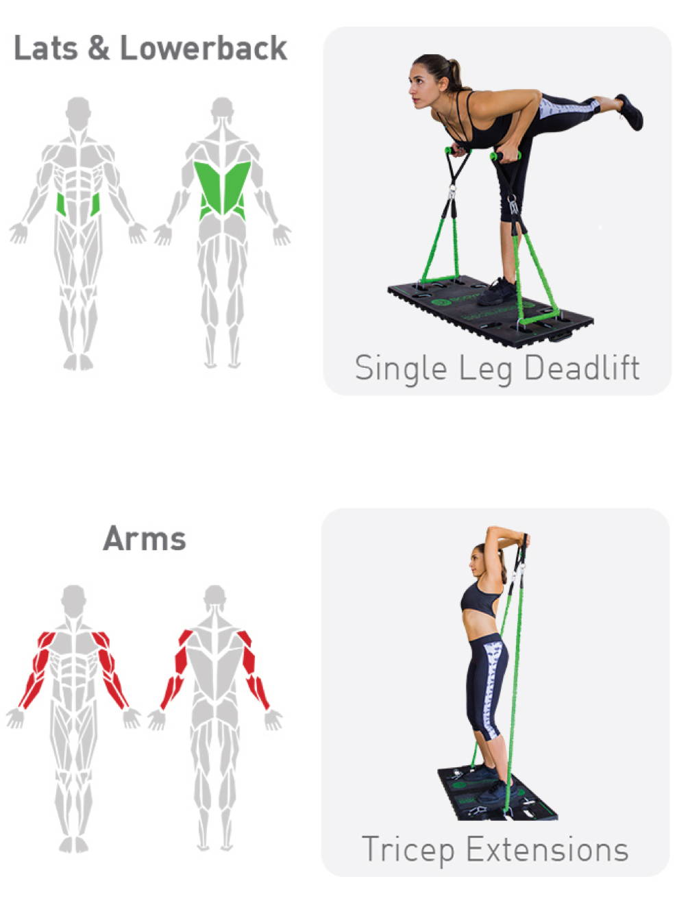 Workout body pdf boss