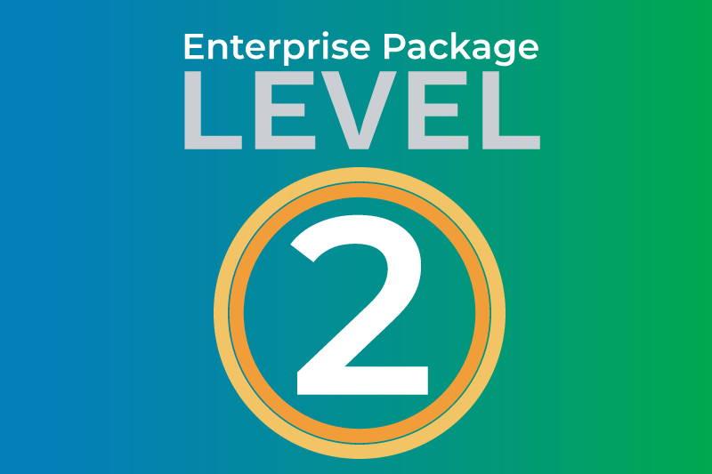 Enterprise level 2