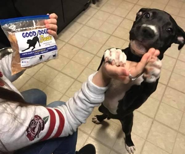 all natural dog chews