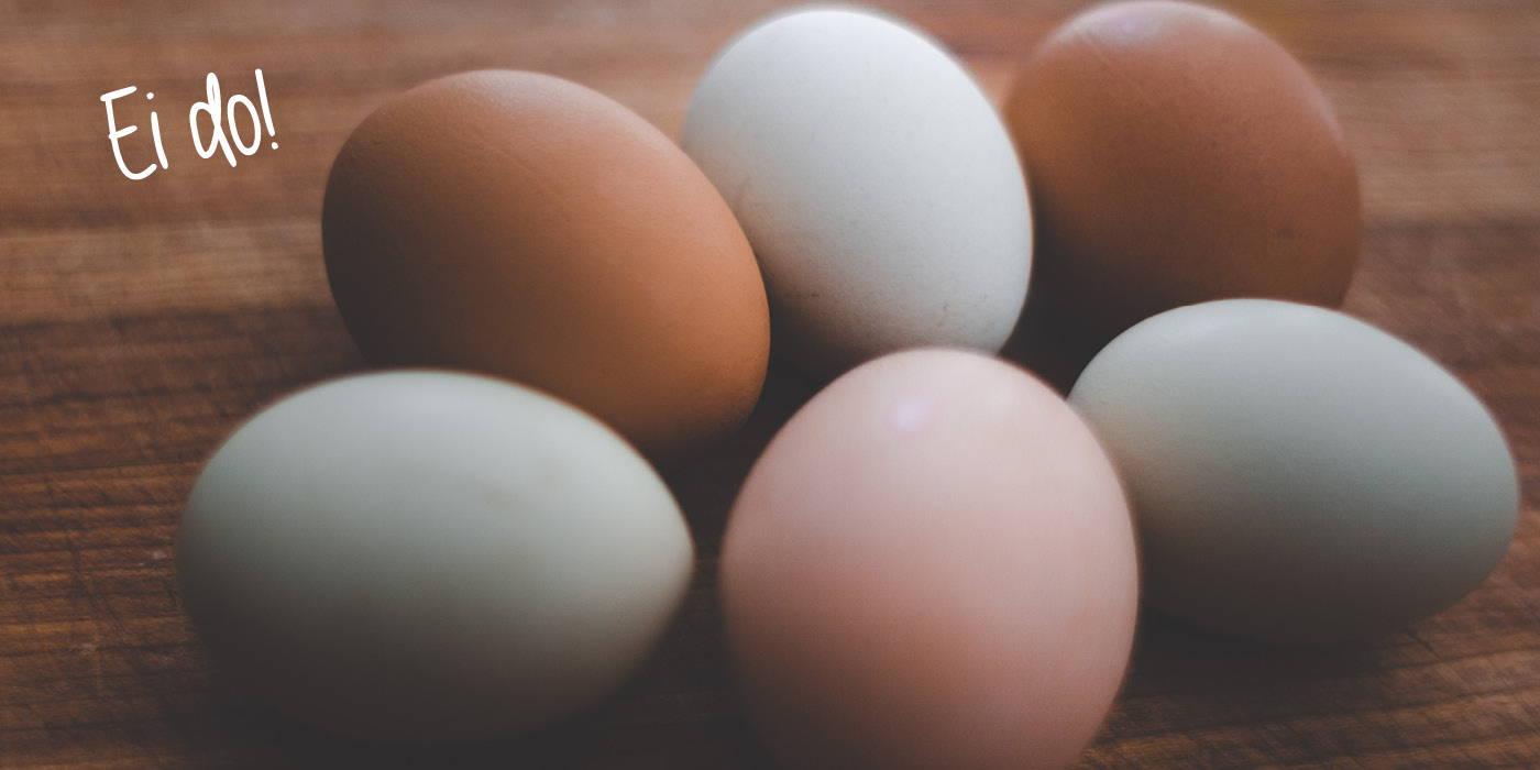Unternehmen Pumperlgsund Eiweiß Eier