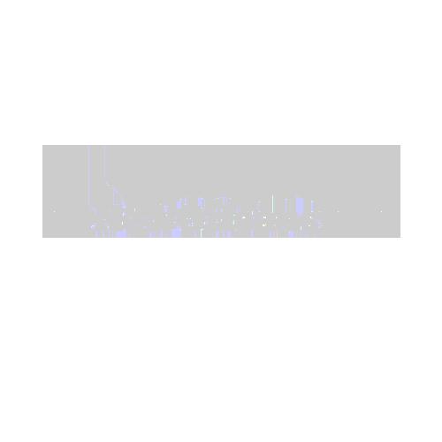 myneworleans.com logo