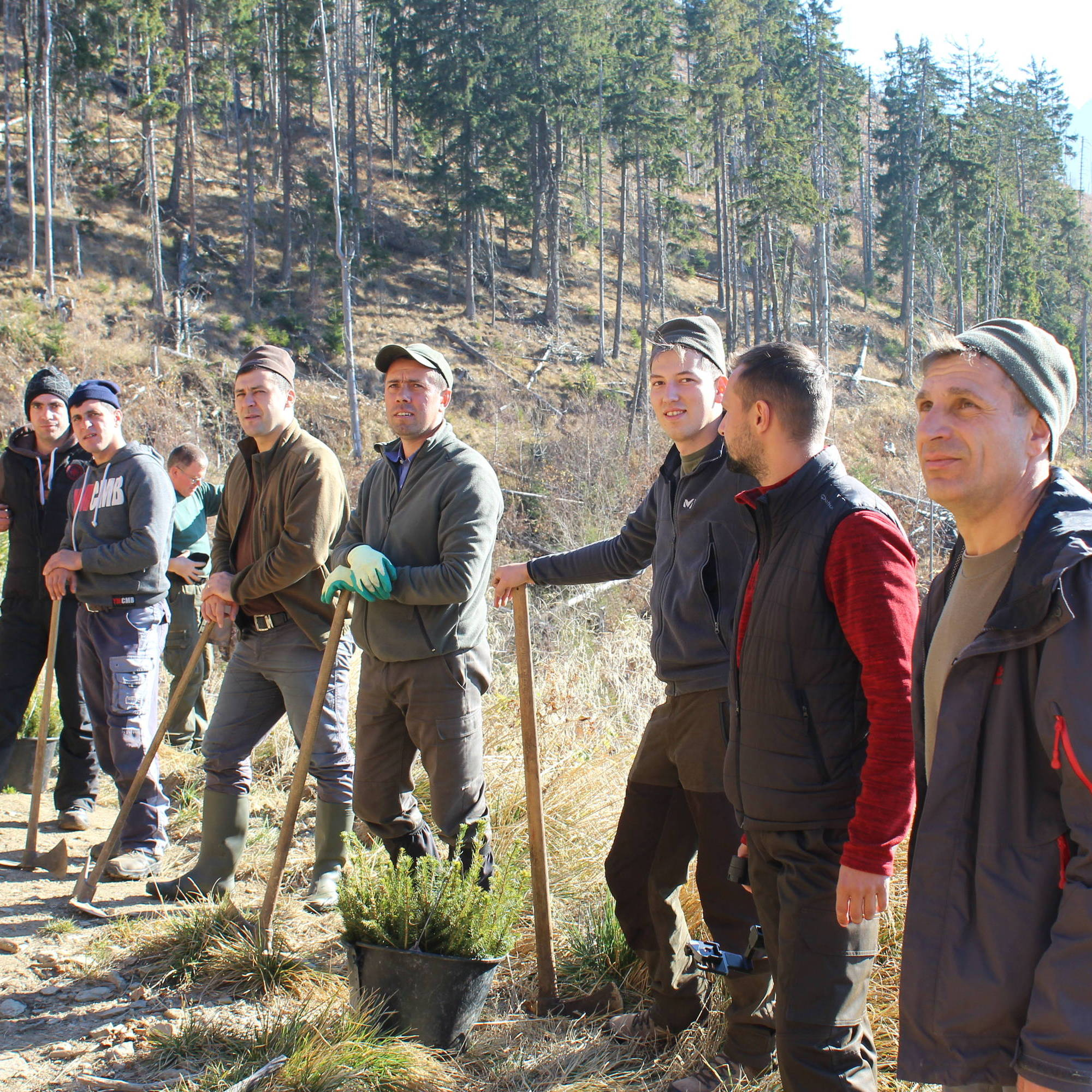 The team of planting stand in a line with their shovels and buckets of saplings