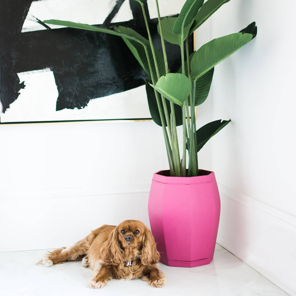 Jolie Paint Home Accessories Planter Project Inspiration