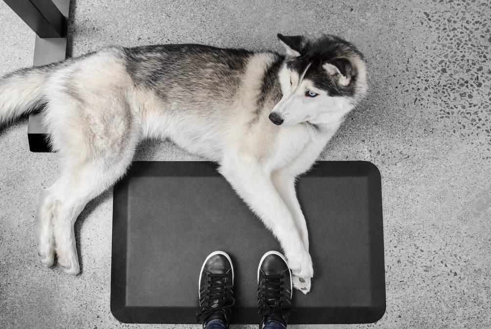 Anti-fatigue Mat ergonofis