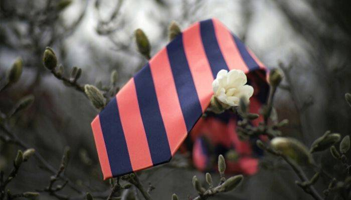 Coral and navy blue striped tie placed on a flowering plant