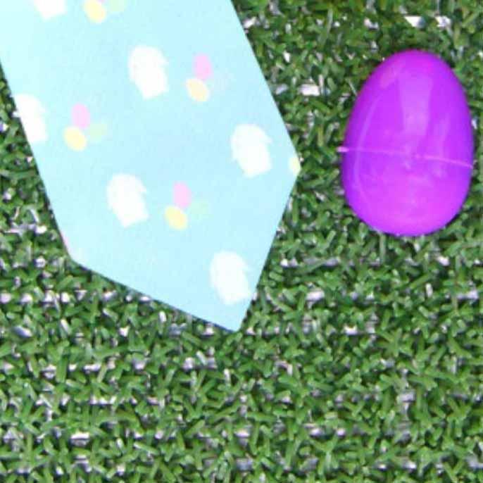 The Bunny Egg