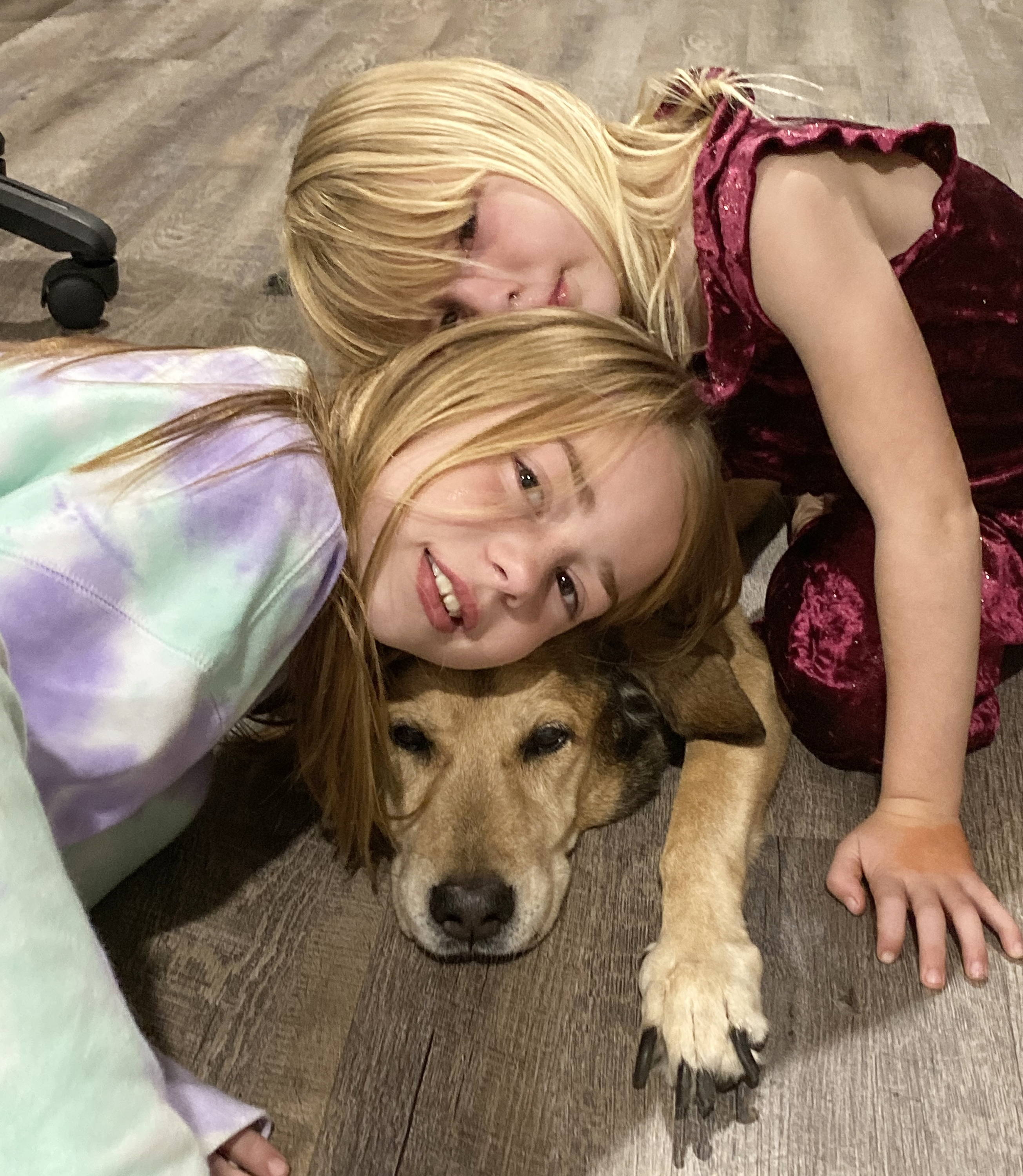 Young girls saying goodbye to a dying family dog.