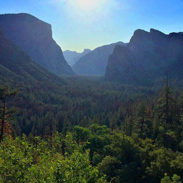 High Quality Organics Express Yosemite Valley