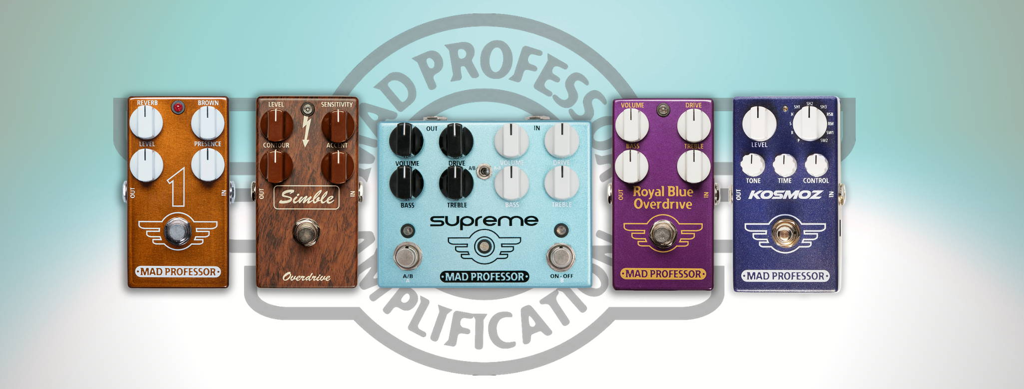 Mad Professor Amplification And Effects