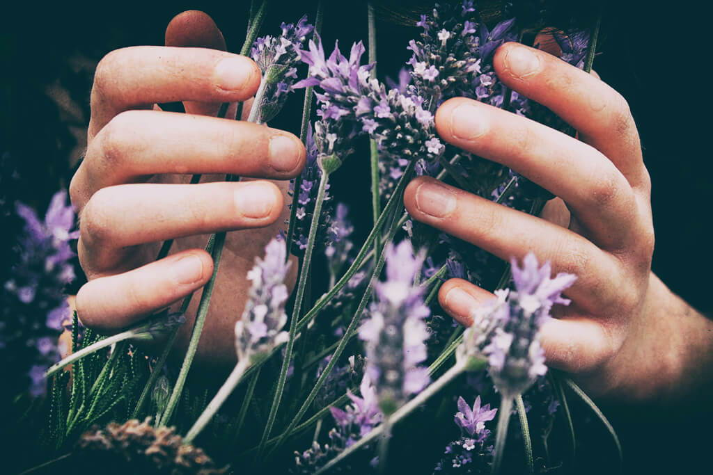 Naturkosmetik Onlineshop – Five Skincare