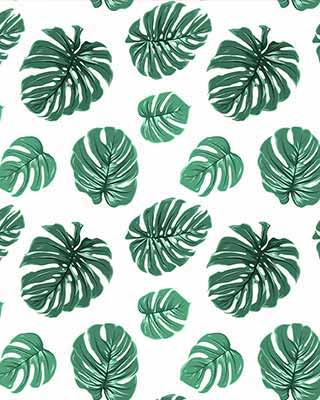 monstera pop art background