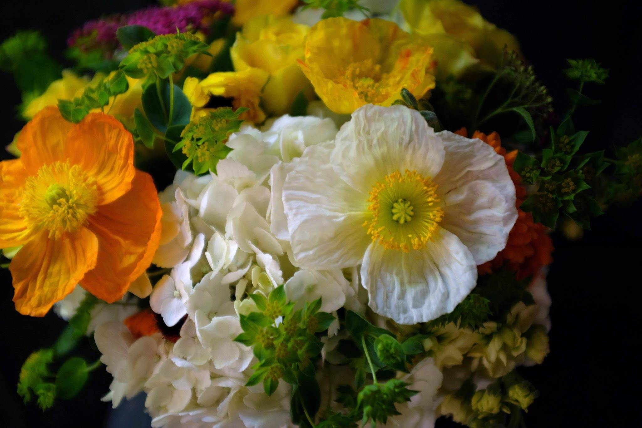 Voted Favorite Florist In Lexington Ky Flower Delivery Michlers