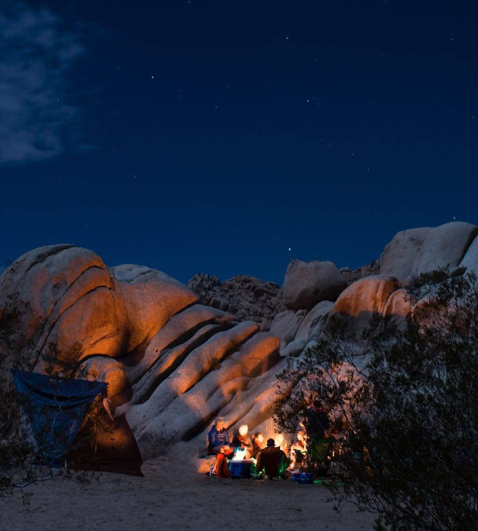 Secured the perfect camp site in Joshua Tree