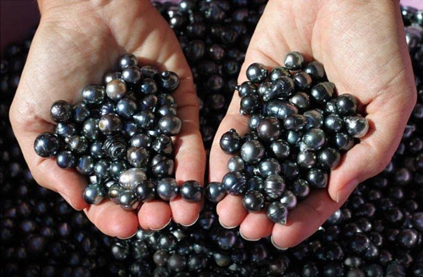 Handful of black pearls