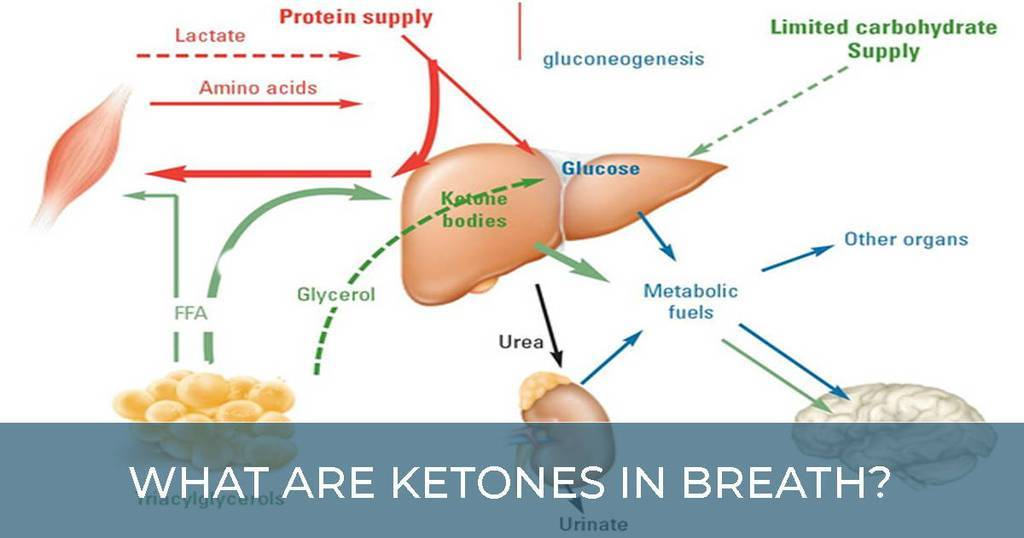 ketones in breath