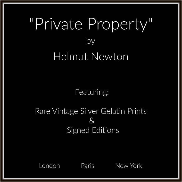 helmut newton photograpy