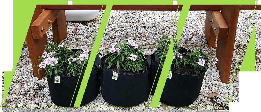 Ecogardener Round Grow Bags in the backyard
