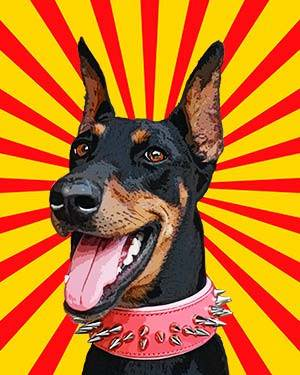 doberman on pop art background