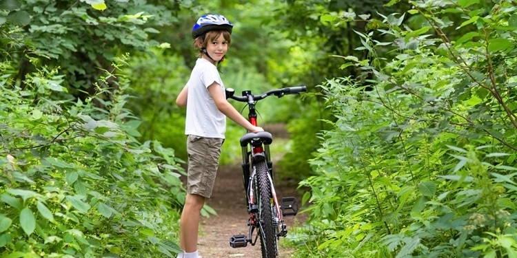 kids bike rentals
