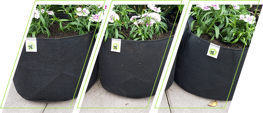 Grow bags with flowers