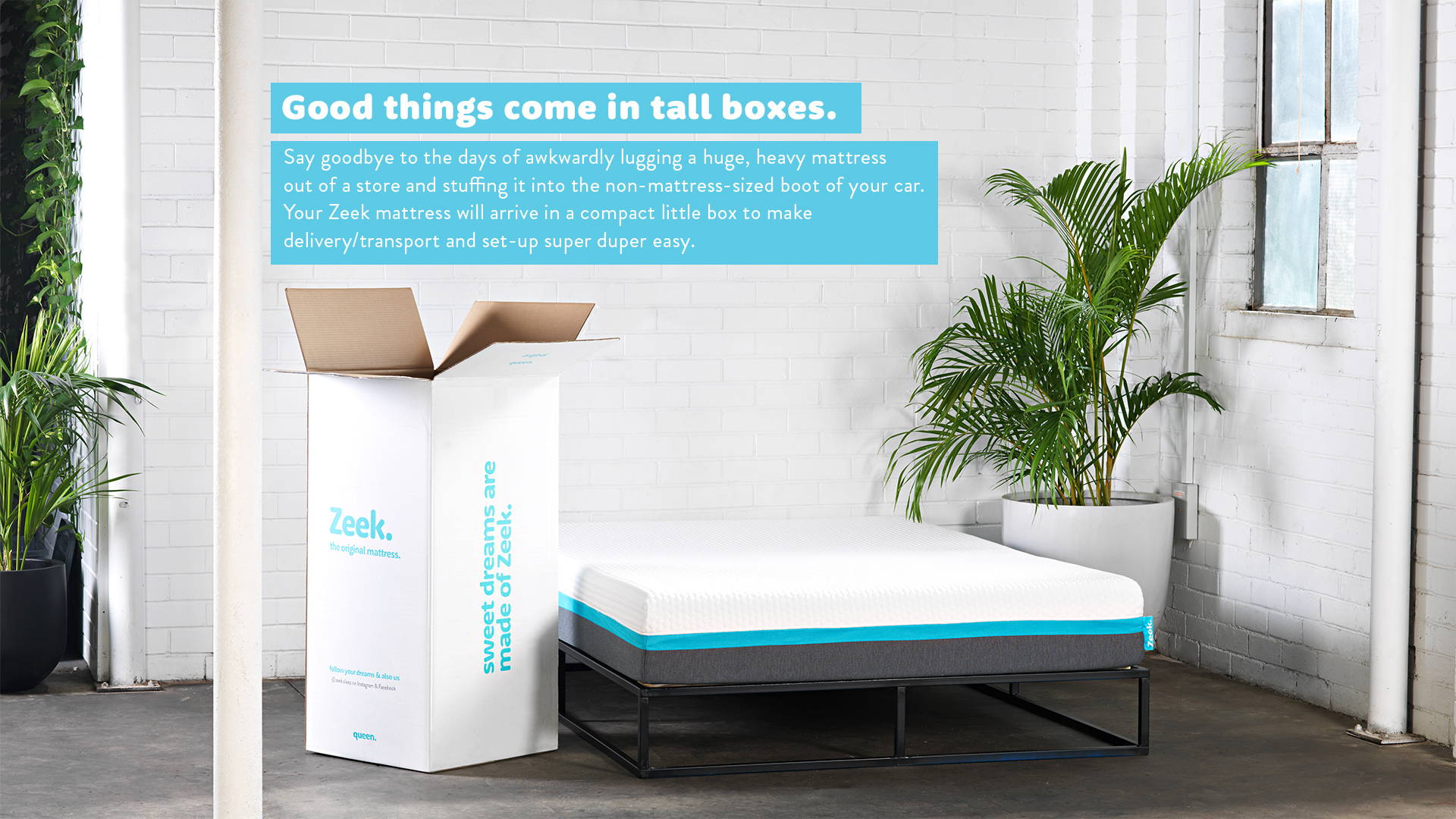 Good Things come in tall boxes, picture of zeek mattress