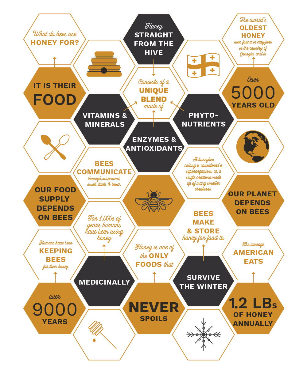 Infographic on honey