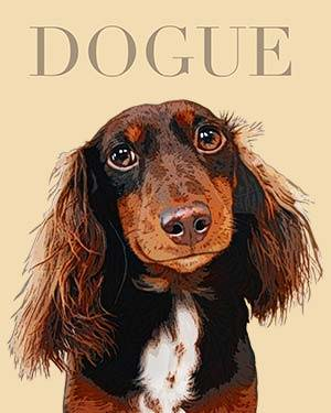 dachshund dogue