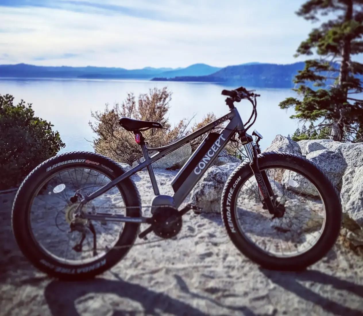 1000 watt high performance electric fat tire bike