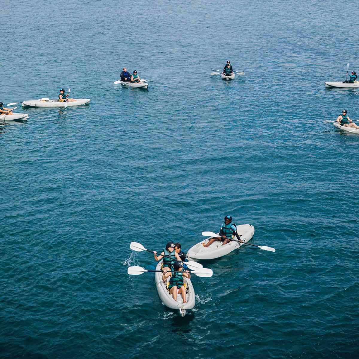 la jolla sea cave kayaking tour