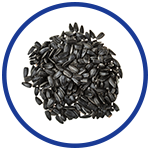 Sunflower Seed Oil for Pain Relief