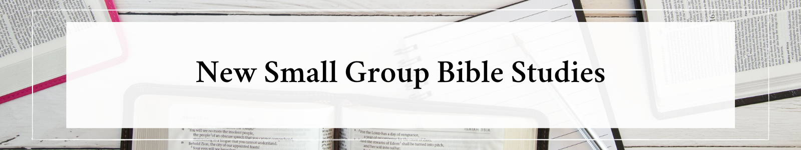 New Small Group Bible Studies