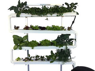 VerTable - The Vertical Salad Table