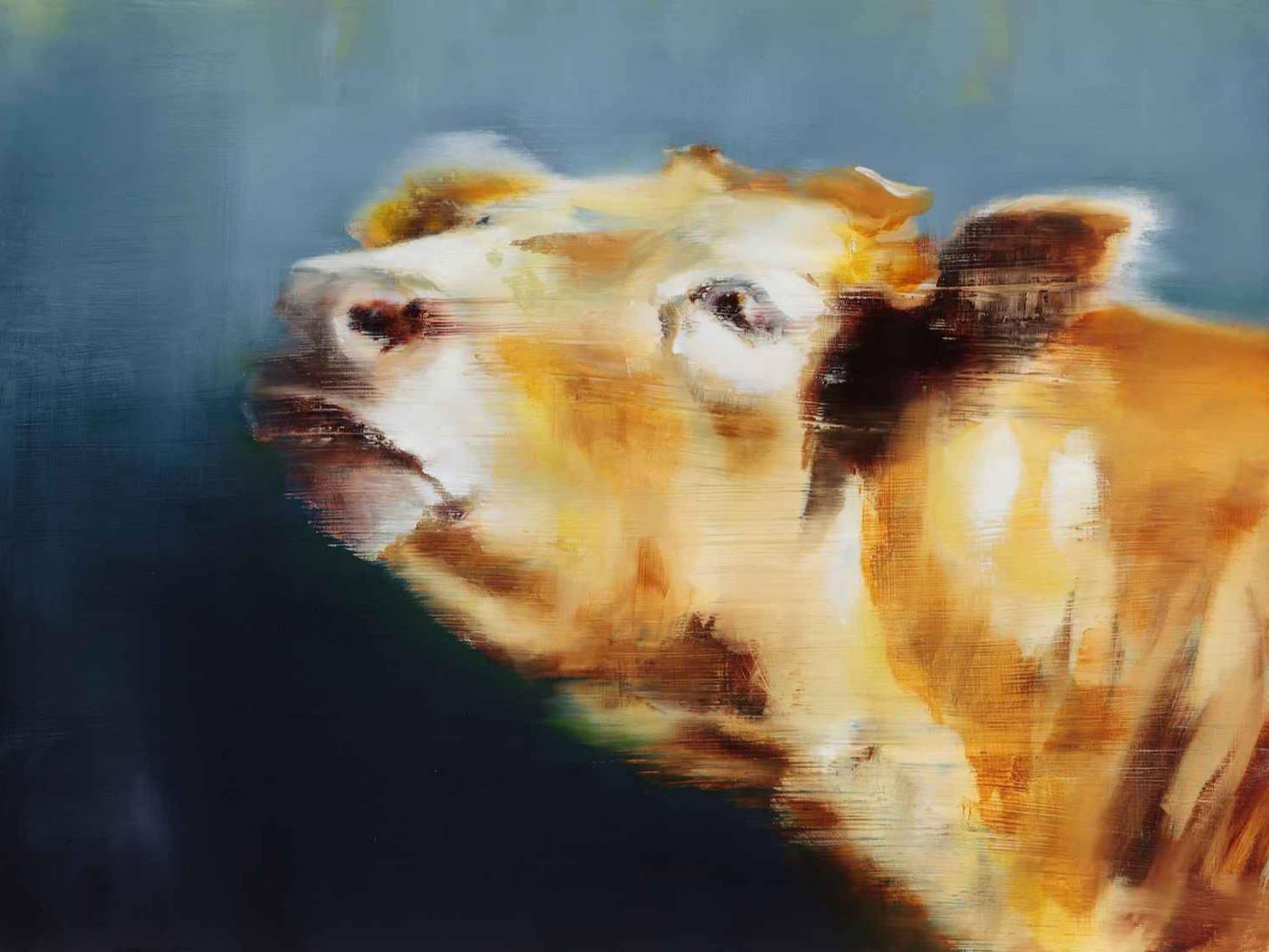Elsa Sroka. Cow Art. Sorrel Sky Gallery. Santa Fe Art Gallery. Maura Allen. Edward Aldrich. Kevin Red Star. Ray Hare. Durango Art Gallery.