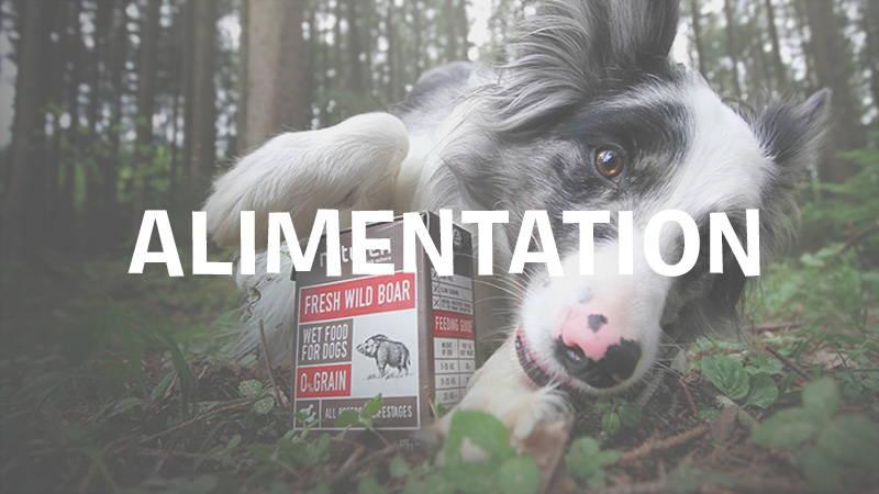 inooko-alimentation-saine-naturelle-pour-chien