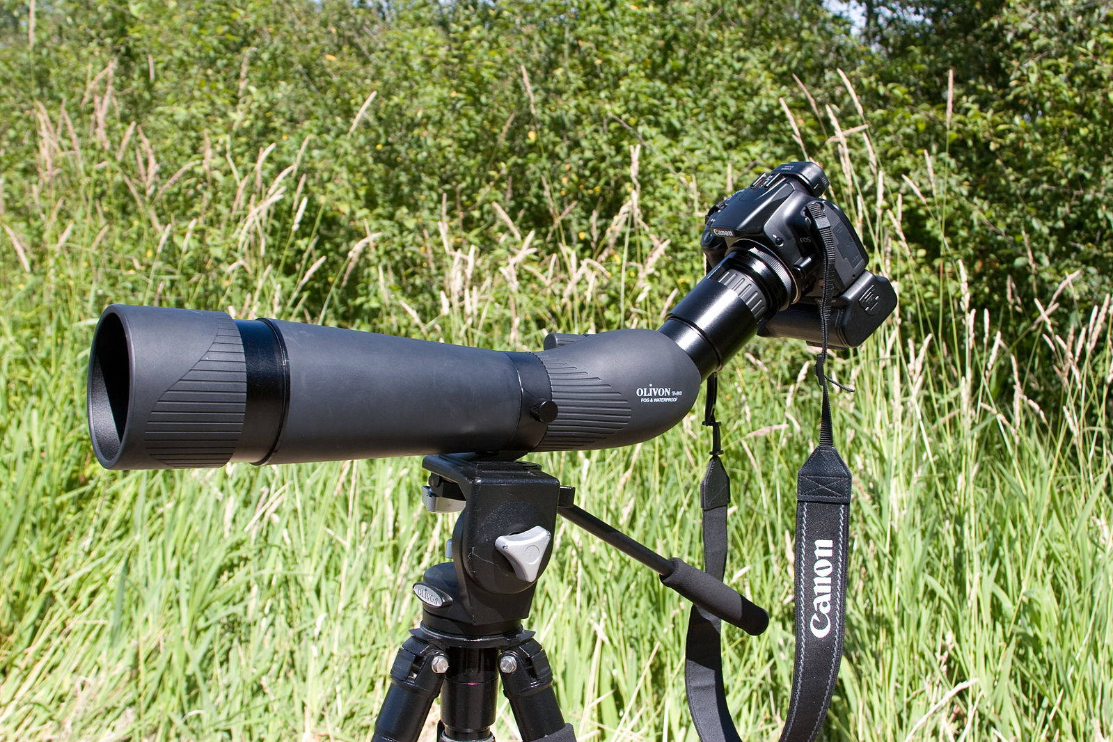 best spotting scope tripod
