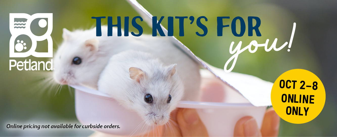 This Kit's For You! Online sale from October 2 to 8, 2021