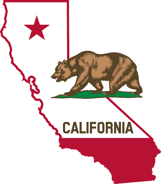 foreign qualification california | delaware business incorporators inc.