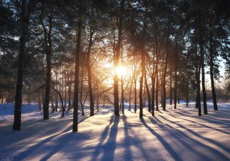 Fonte della vitamina D - il sole
