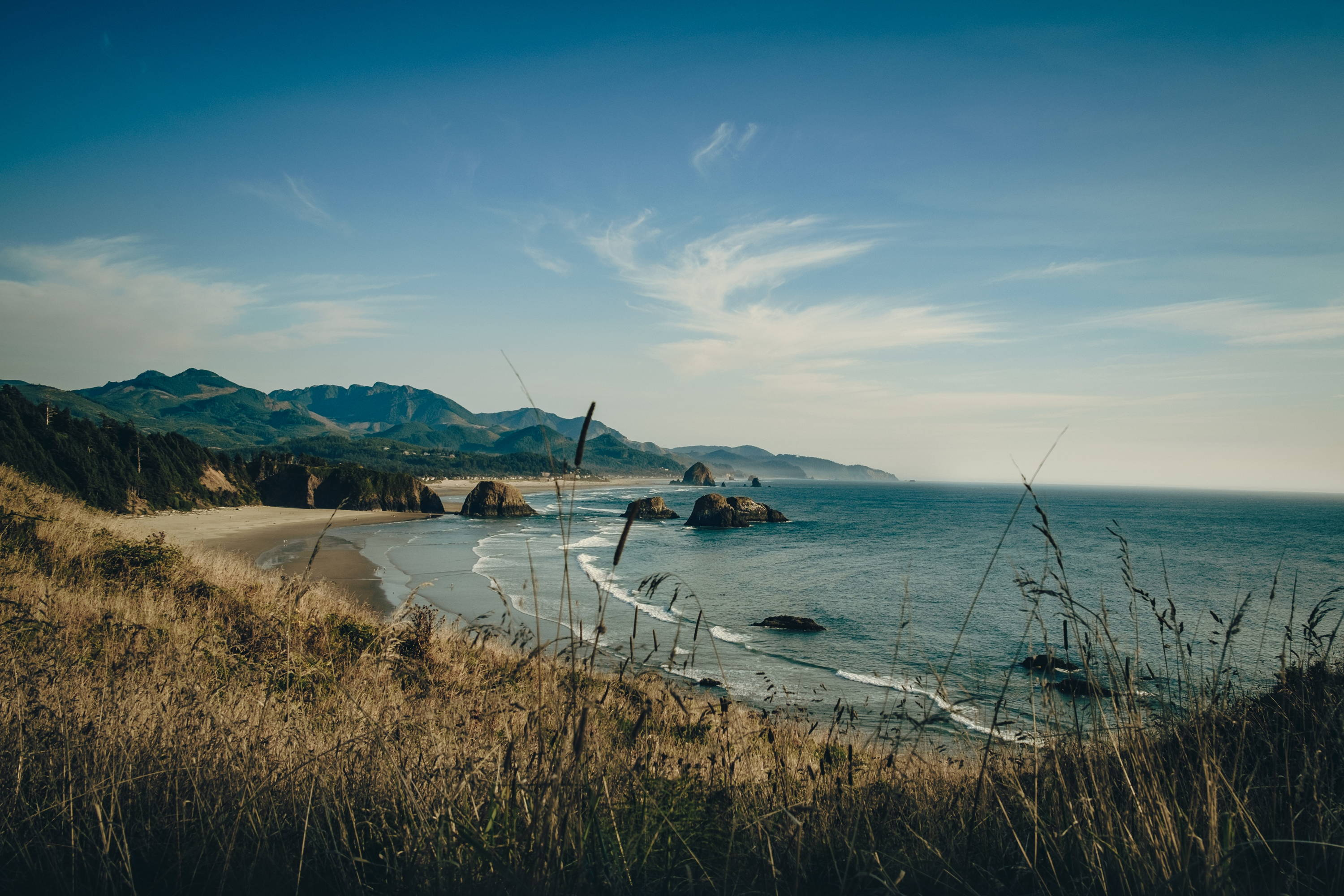 Waves crash gently against the beach with tall grass in the foreground at Ecola State Park.