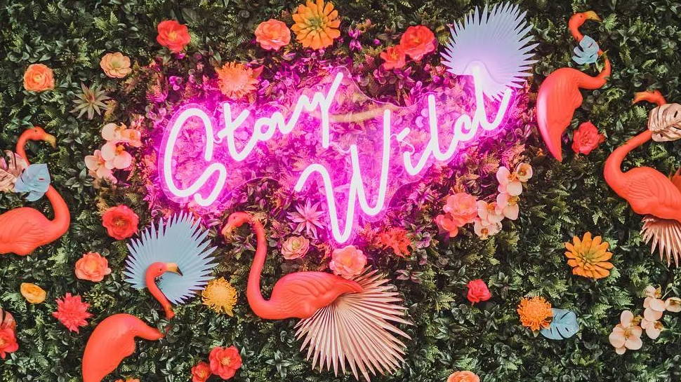 Brite Lite new neon sign pink stay wild handwriting