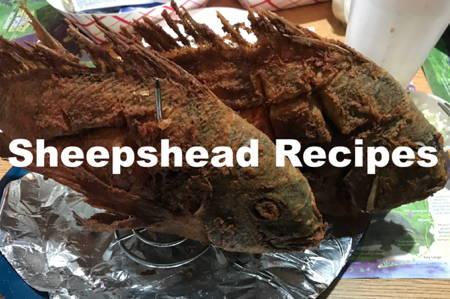 Sheepshead Recipes On Hunting and Fishing Depot