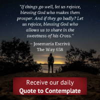 Daily Meditations, Contemplation in the midst of the world, daily quotes to contemplate