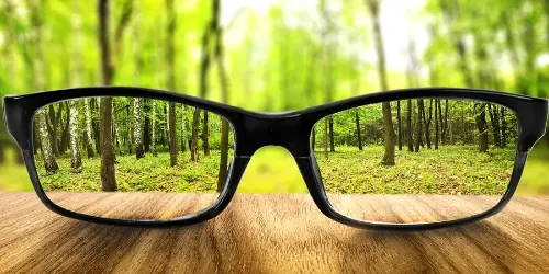 eyeglasses to see clearly through forest