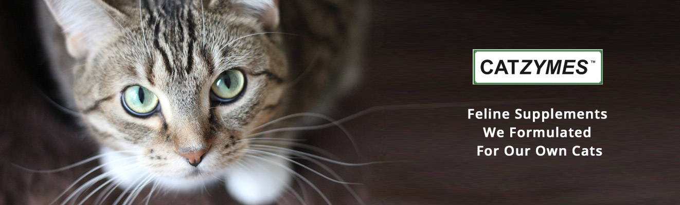 Feline Supplements  We Formulated  For Our Own Cats