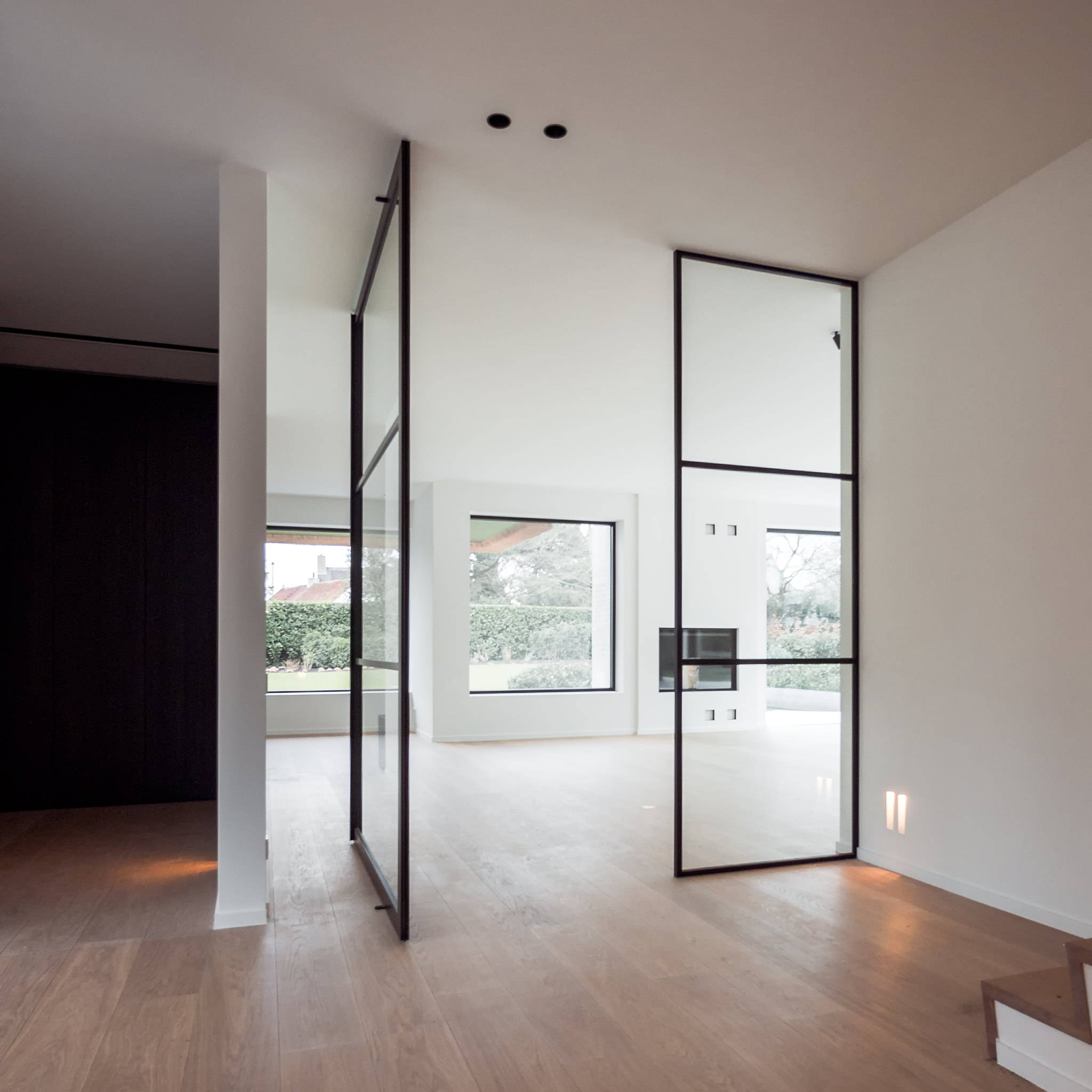 Glass and aluminium pivot door crittall style